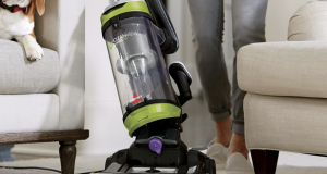 Why do Dogs hate Vacuum Cleaners?